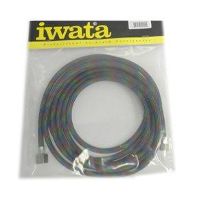 IWATA Braided Air Hose - 10'
